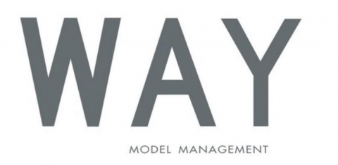 Way Model Management
